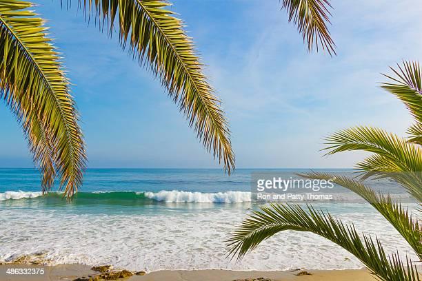 Laguna Beach coastline, CA (P)
