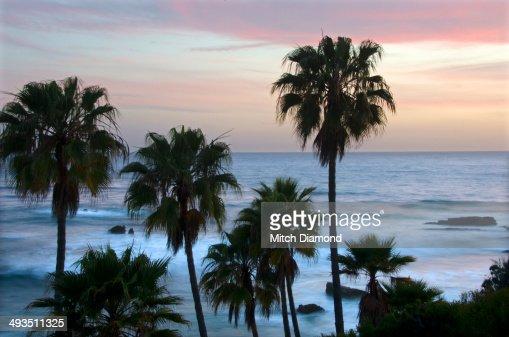 Laguna Beach evening
