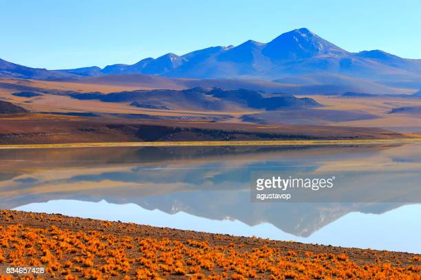 Laguna Tuyacto - Lake Tuyacto and Miniques snowcapped Volcano - Turquoise lake salt mirrored reflection and Idyllic Atacama Desert, Volcanic landscape panorama – San Pedro de Atacama, Chile, Bolívia and Argentina border