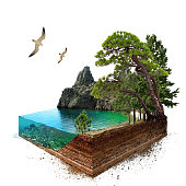 Lake. 3d isometric