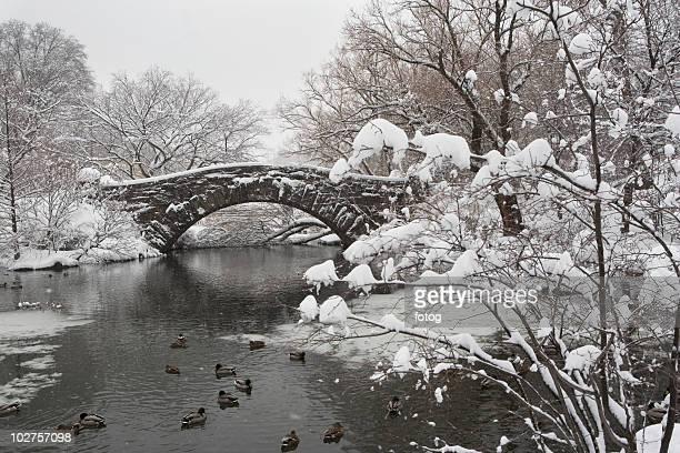 Lake and bridge in winter