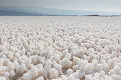 Lac Asal salt crystals around the dried lake surface, Djibouti, East Africa, Horn of Africa