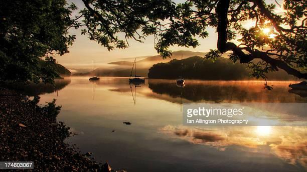 Lake Bank dawn