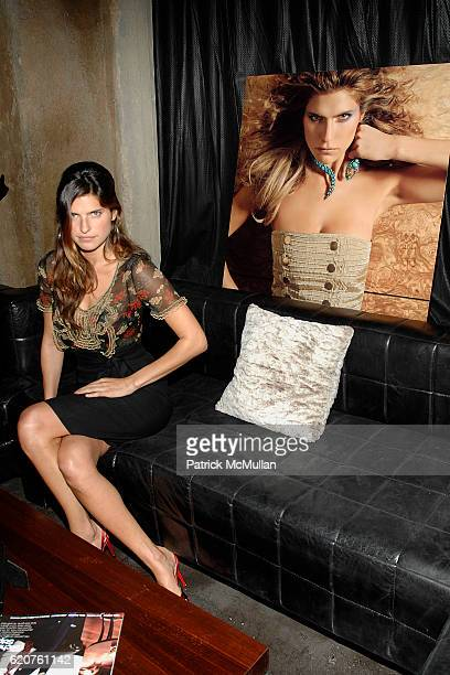 Lake Bell attends Cocktails and hors d' oeuvres to Celebrate the Launch of Thompson Hotels' Second Issue of Room 100 at Teddy's on July 11 2008 in...