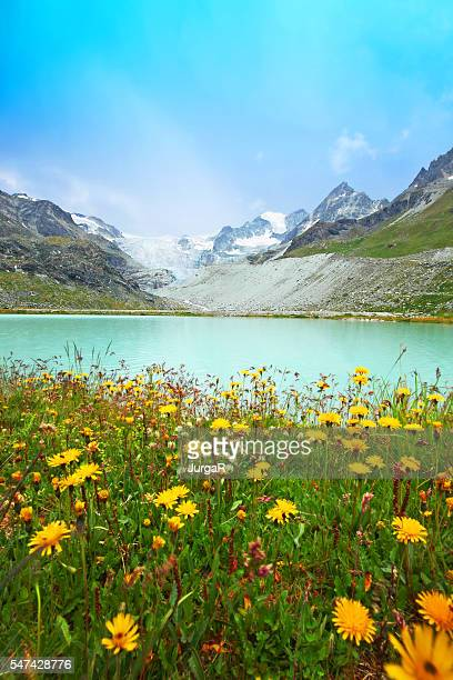 Lake Chateaupre at the Moiry Glacier in Swiss Mountains