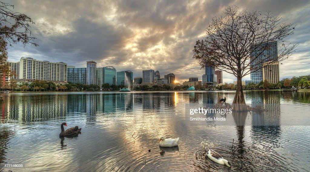 Lake Eola Cloudy Sunset