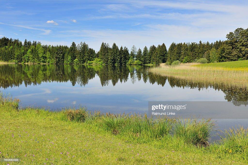 Lake Hegratsried