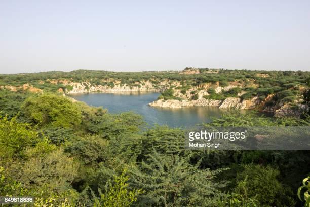 Lake in Asola Bhatti Wildlife Sanctuary, Asola, Delhi