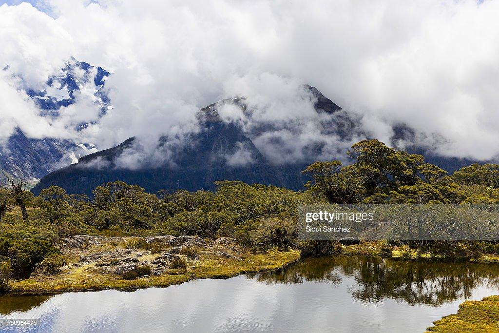 Lake in Fiordland.