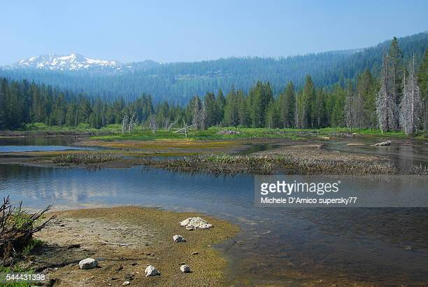 A lake in Lassen National Park.