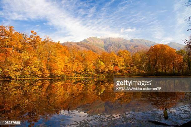 Lake karikomi in autumn, Fukui Prefecture, Honshu, Japan