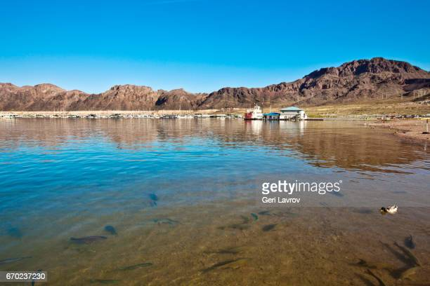 Lake Mead: Boulder City, Nevada