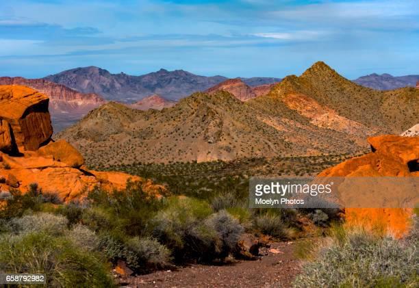 Lake Mead National Recreation Area-Nevada 0019