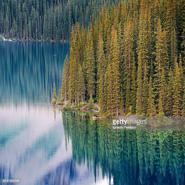 Lake Moraine, Banff National Park,Canadian Rockies