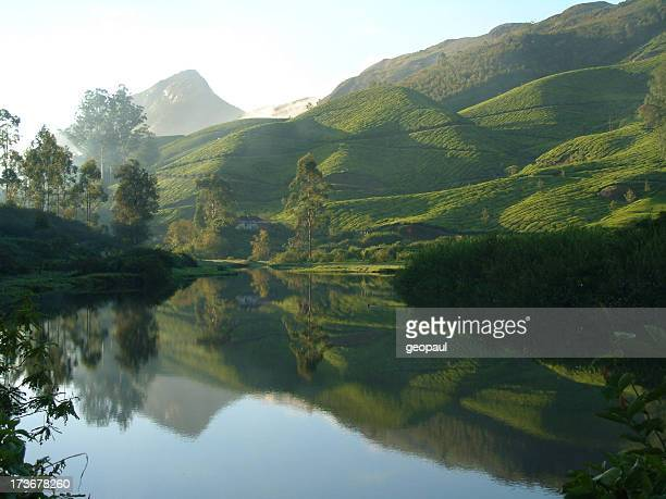 Lake near tea plantation