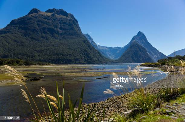 Lake of Milford Sound in South Island, New Zealand
