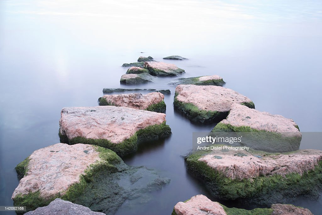 Lake Ontario with mossy rock