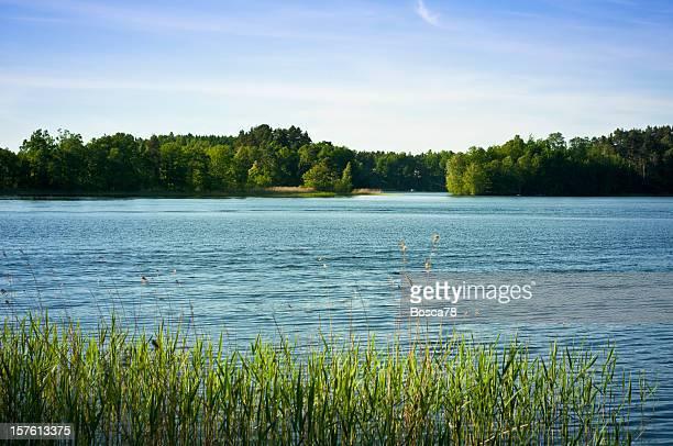 See Lake panorama