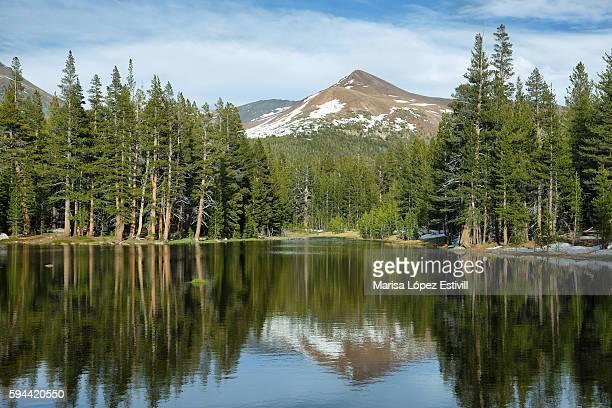 Lake reflections in Tioga Pass, Yosemite