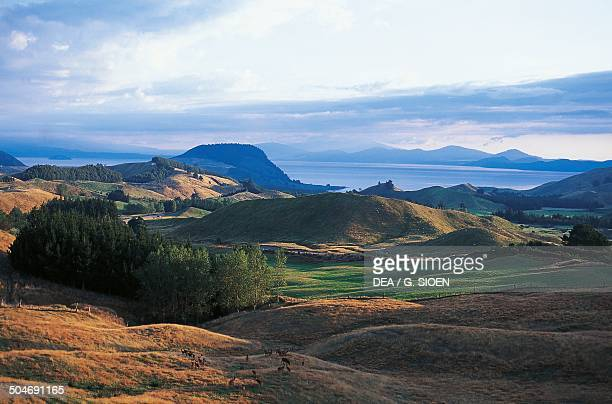 Lake Taupo North Island New Zealand