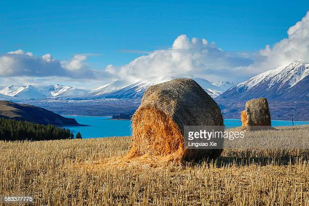 Lake Tekapo with hay bales and mountain background