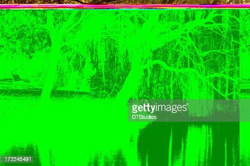 Lake Weeroona Reflection