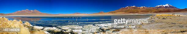 Lake with Flamingos near Uyuni - Bolivia