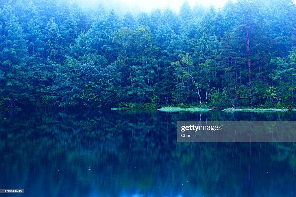 Lake with reflections : Stock Photo
