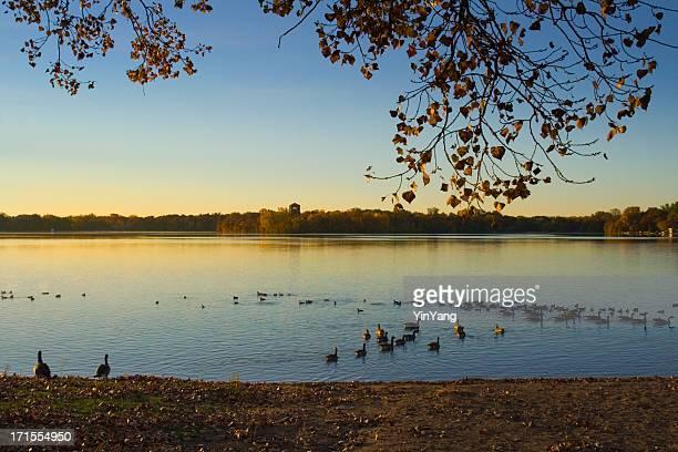 Lakeshore Morning