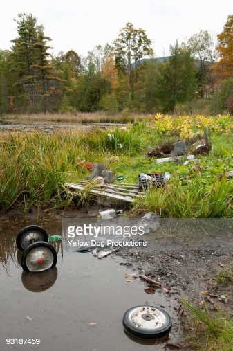 Lakeside With Environmental  Damage : Stock Photo