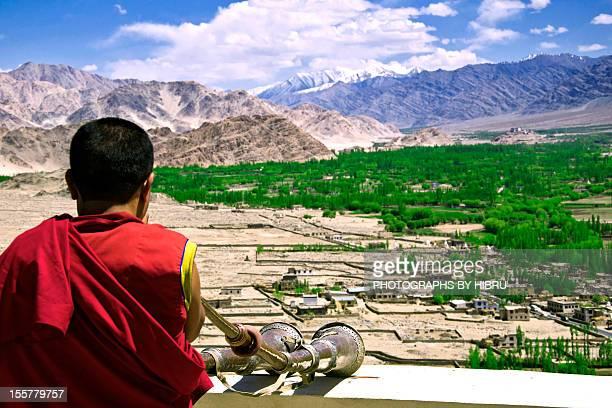 Lama at Monastery