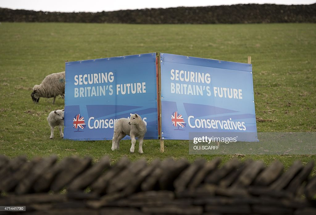Lambs stand next to a poster for the Conservative Party placed in a sheep field in the 'High Peak' parliamentary constituency in Little Hayfield...