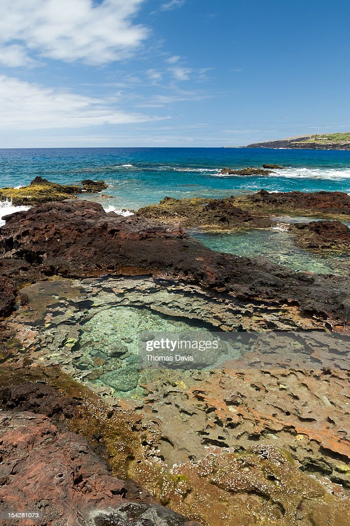 Lanai Tide Pools : Stock Photo