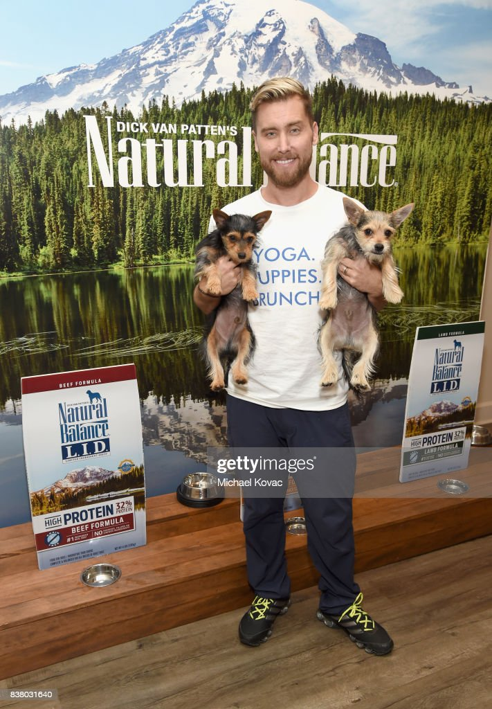 Lance Bass with Chip and Dale at Natural Balance Pet Foods announce new formula with Lance Bass and Downward Dogs - Literally - at The DEN Meditation on August 23, 2017 in Los Angeles, California.