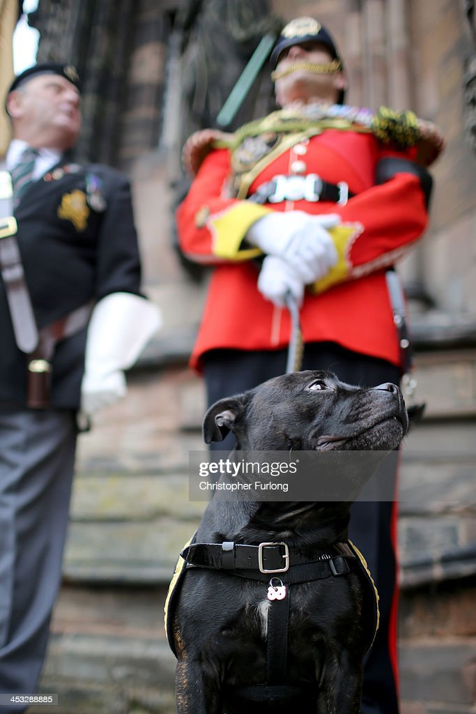 Lance Corporal Watchman V the Staffordshire bull terrier mascot for the Staffordshire Regiment stands guard outside Lichfield Cathedral during the...