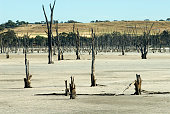 Lake Taarblin former seasonal freshwater lake and recreational area destroyed by rising salinity levels from inappropriate agricultural practices and...