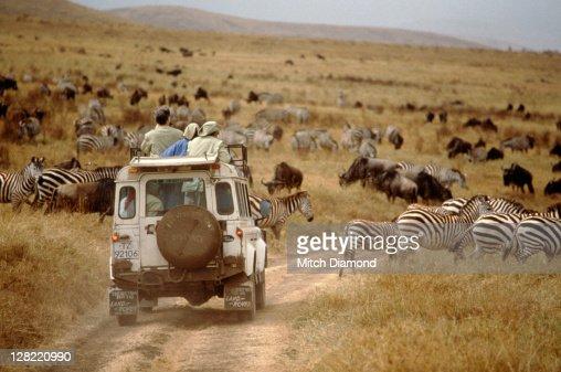 Land Rover on safari, Tanzania : Stock Photo