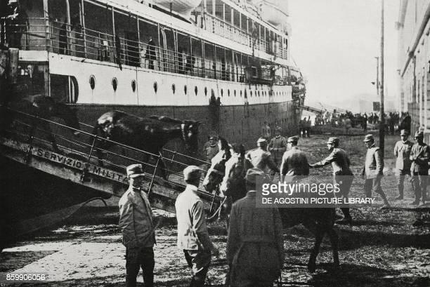 Landing of horses from America Genoa Liguria Italy World War I from L'Illustrazione Italiana Year XLIV No 26 July 1 1917