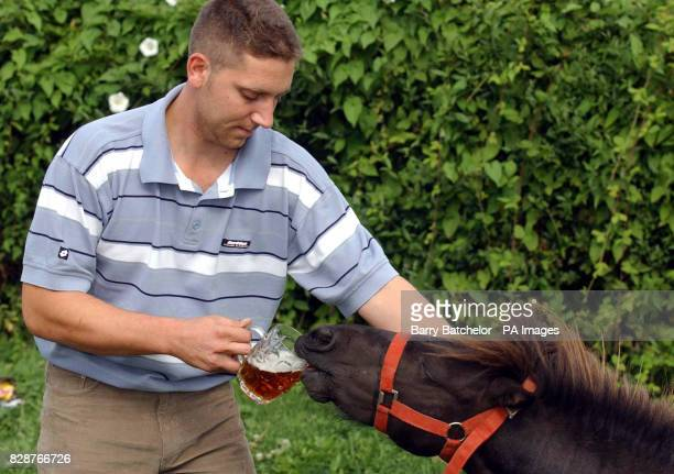 Landlord Jason Reeves offers Sparky a pint at his local the Globe Inn in Sandhurst Gloucester The Shetland Pony is fussy about his drinks and turns...