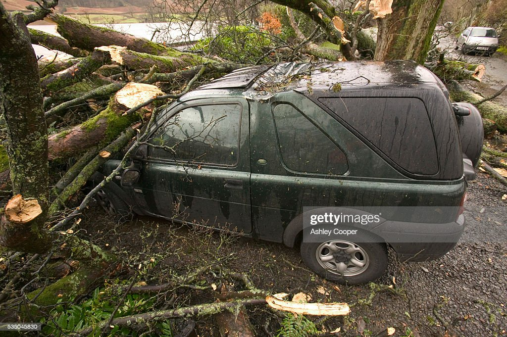 Landrover Discovery crushed by tree blown over in 100mph winds at Rydal Cumbria