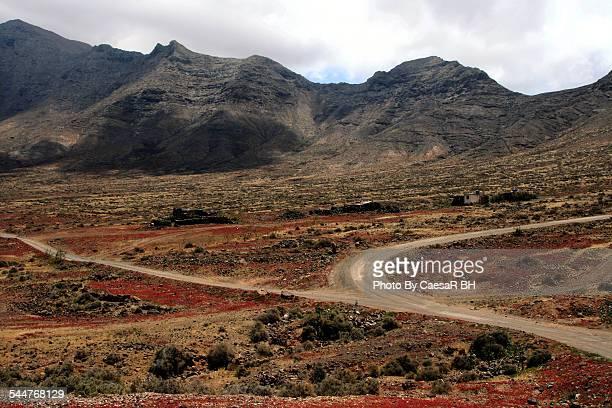 Lands of Fuerteventura