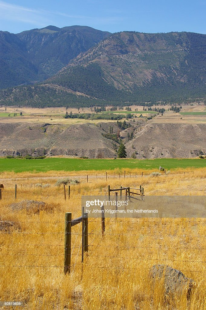 Landscape along highway 99 in Canada : Stock Photo