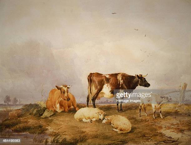 'Landscape and Cattle' c18231902