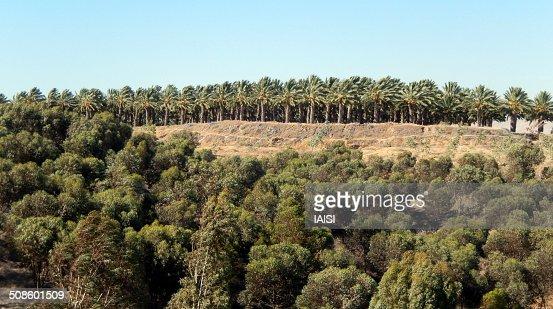 Landscape at Jordan - Israel border : Stock Photo