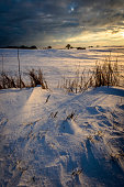 Landscape at sunrise in winter, Schleswig-Holstein, Germany