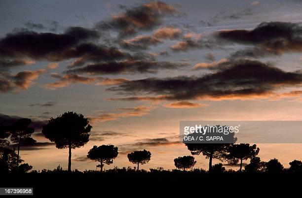Landscape at sunset near Montserrat mountain Catalonia Spain