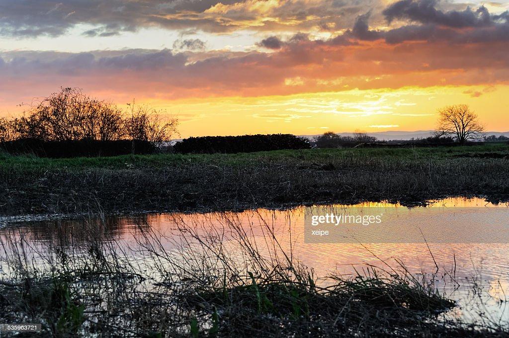 Landscape at sunset : Stock Photo