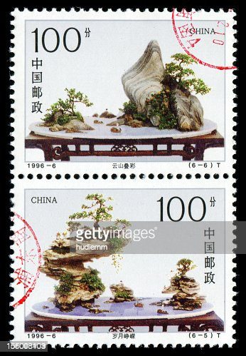 Landscape bonsai with rocks (XXXL) : Stock Photo