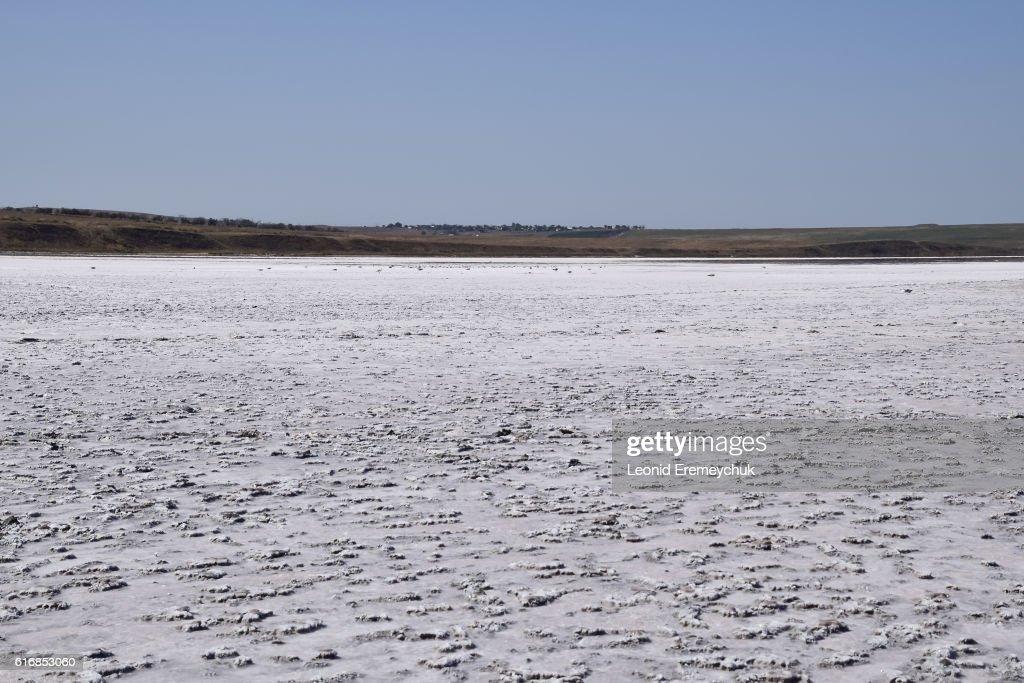 Landscape bottom of the dry lake : Stock Photo
