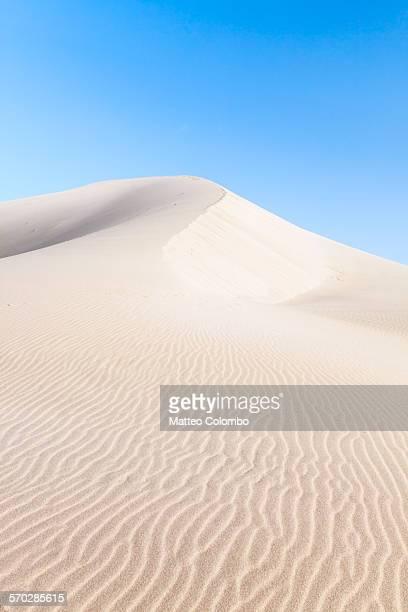 Landscape: desert sand dune at sunrise, China